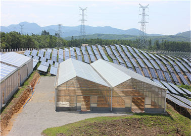 High Density Greenhouse Solar System Economical Planting Hot Dip Galvanized Steel Structure