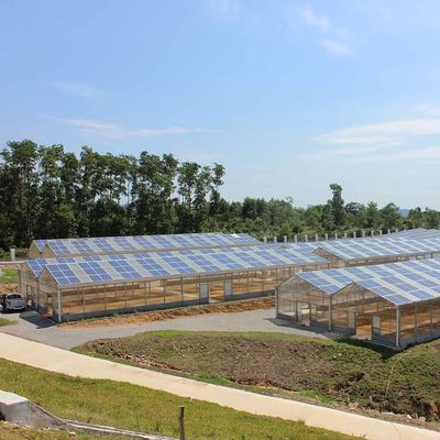 Commercial Greenhouse Solar System Electric Power Galvanized Surface Treatment